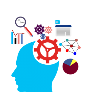 clearwater seo company digital marketing search engine optimization